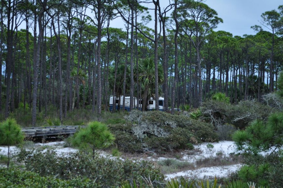 my adventures at cape san blas florida It has been a great month for windsurfing on the gulf coast of florida  weekend it was just my husband  windsurfing and camping at cape san blas.